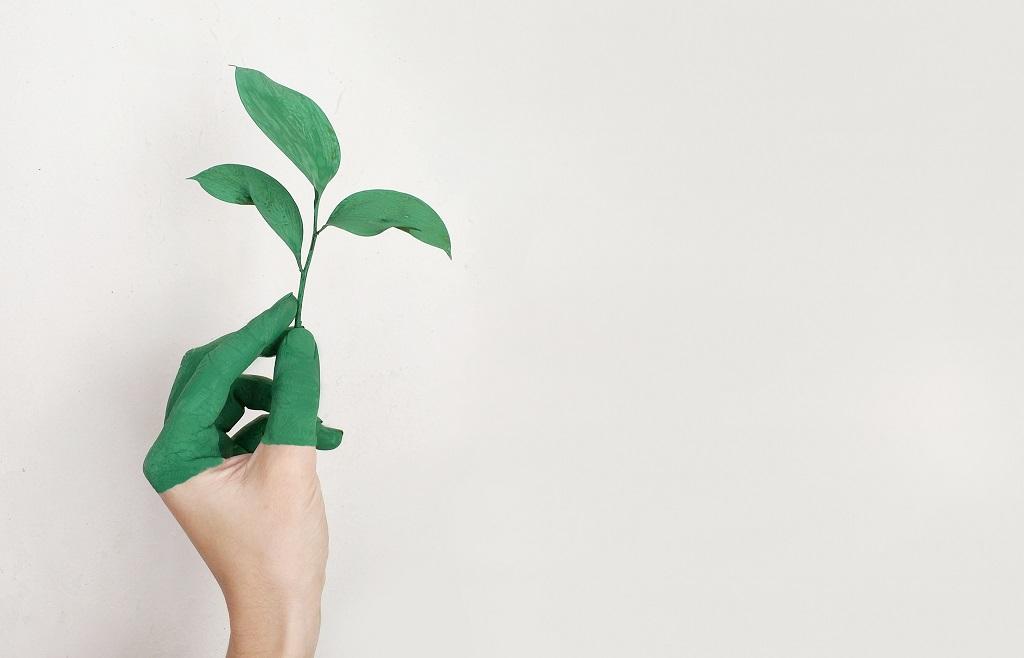 Pentingnya Desain Sustainability Report