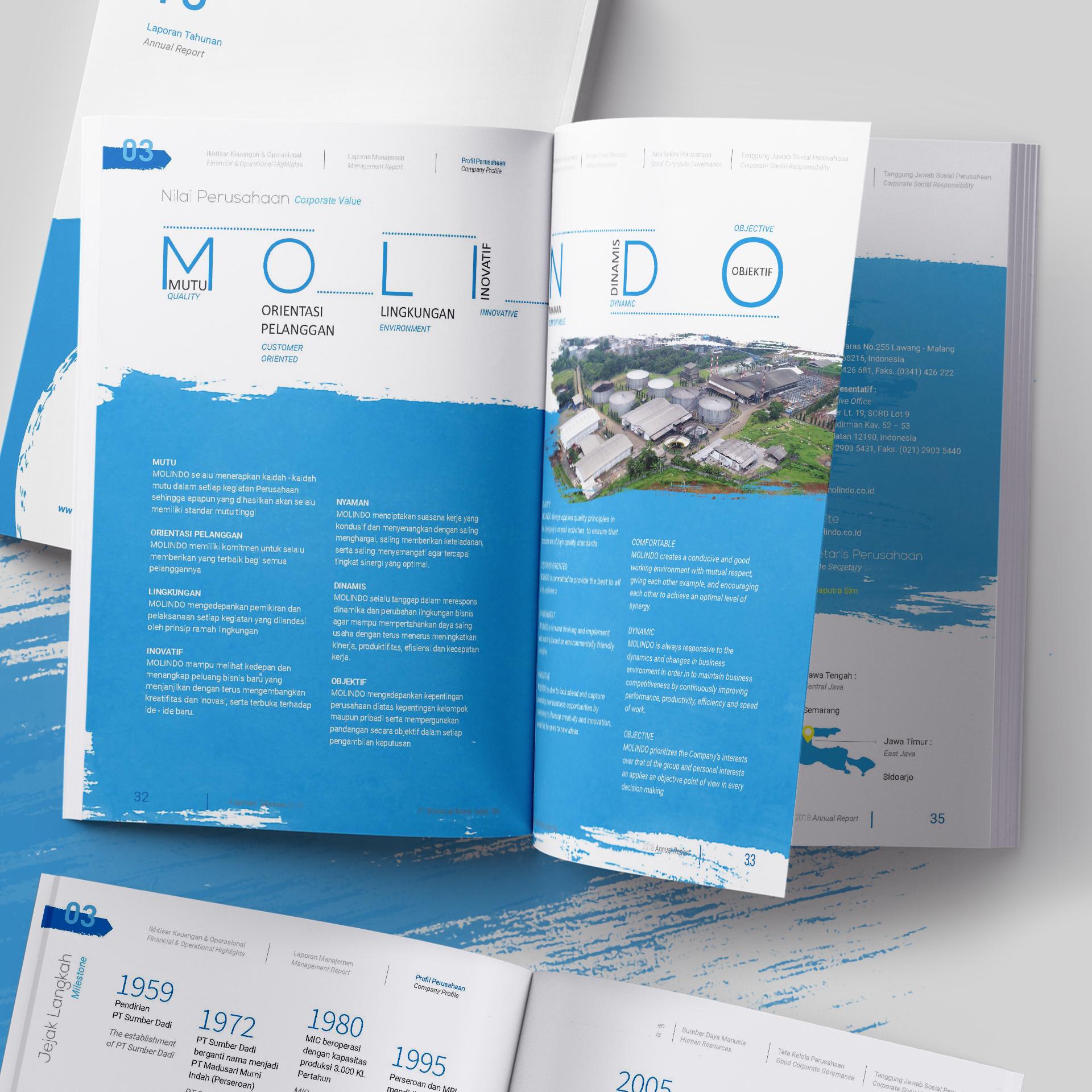 jasa desain annual report molindo