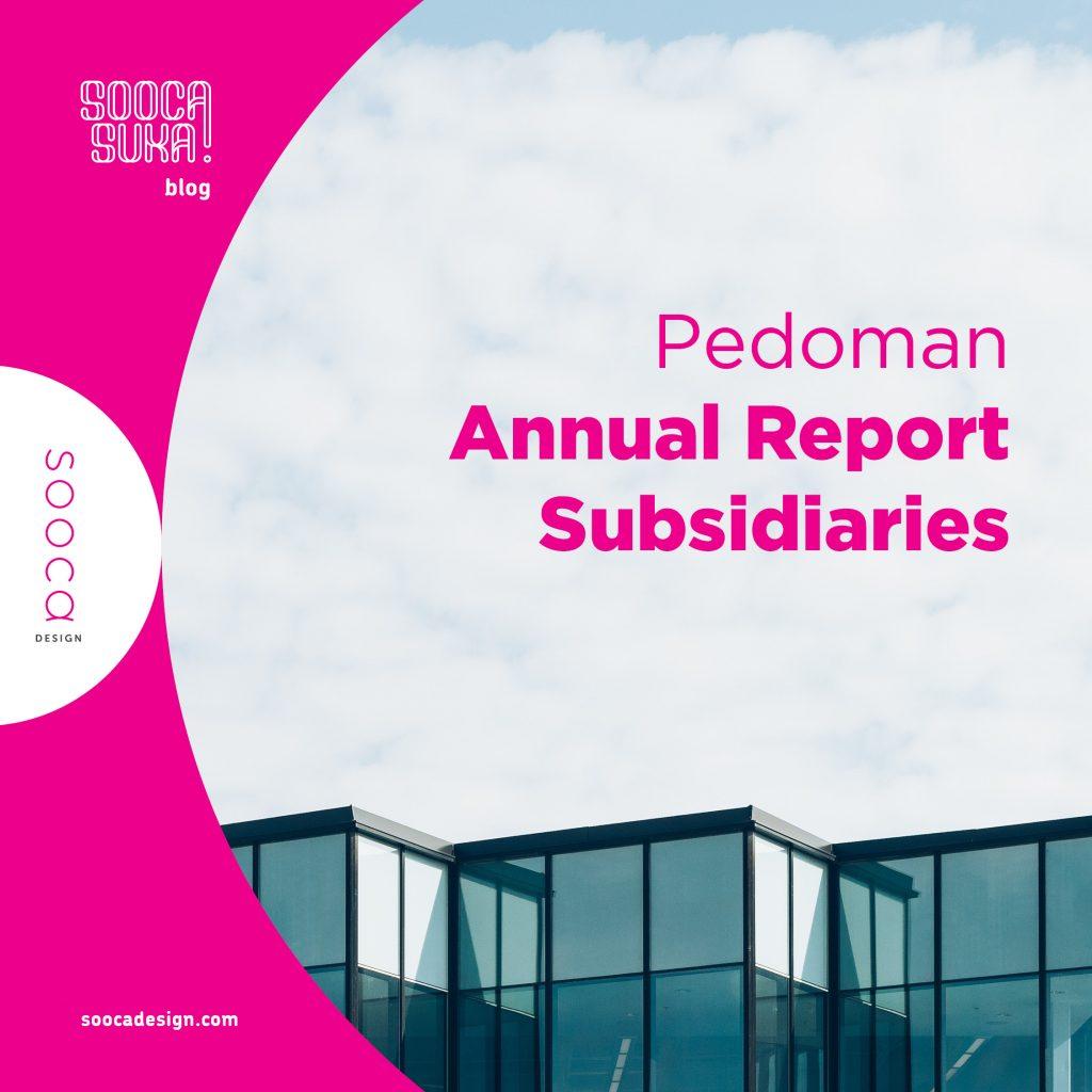 laporan keuangan anak perusahaan (annual report subsidiaries)